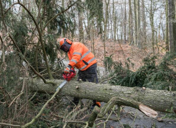 <p>In Rochlitz haben Bauhofmitarbeiter umgestürzte Bäume zersägt, um Straßen wieder befahrbar zu machen -&nbsp;beispielsweise an der Zufahrt zur Gaststätte auf dem Rochlitzer Berg.&nbsp;</p>