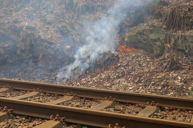 <p>Der Brand zog sich im Bahndamm auf eine Länge von etwa 100 Metern.</p>