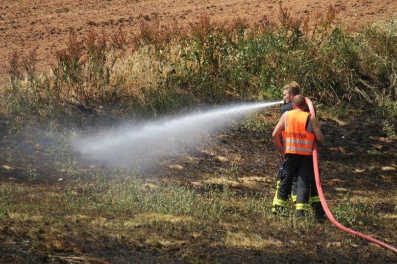 <p>Nach ersten Angaben bekämpften die Feuerwehr Hartenstein und viele Feuerwehren aus der Region den Brand gemeinsam mit Bauern und Anwohnern.</p>