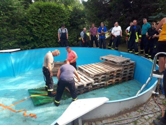 <p>Am&nbsp;Rodauer Weg in Demeusel musste ein&nbsp;Pferd aus einem Pool gerettet werden. Die Kameraden pumpten den Pool leer und bauten eine Treppe aus Europaletten.</p>
