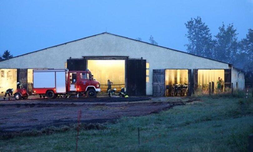 <p>Wie die Polizei mitteilte, kam das Feuer in einem Rinderstall auf.</p>