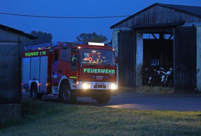 <p>Die Tiere wurden in einen anderen Bereich untergebracht und bei dem Feuer nicht verletzt.</p>