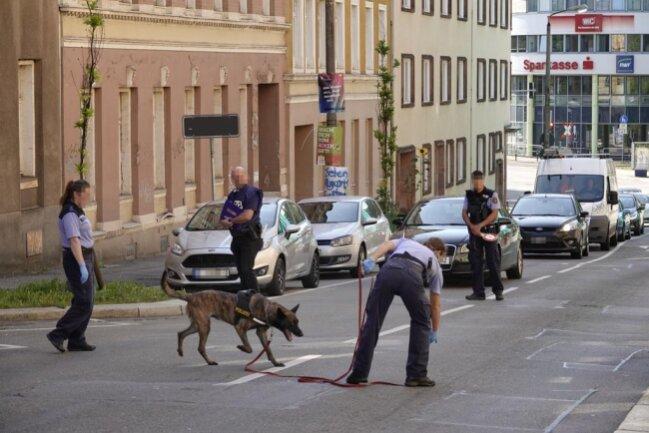 <p>Am Donnerstag kam vor dem Haus auch ein Polizeispürhund zum Einsatz.</p>