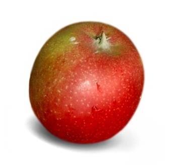 <p>Braeburn: süß-säuerlich, fest, schwach aromatisch, lässt sich gut lagern, von allen Äpfeln am meisten Vitamin C; Verwendung: frisch, Kuchen, Bratapfel, Apfelmus, Saft; Ursprung:&nbsp;Neuseeland &nbsp;</p>