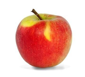 <p>Elstar: süß-säuerlich, mittelfest, saftiges, knackiges Fruchtfleisch von weiß-gelblicherFarbe, mittlere Lagerfähigkeit; Verwendung: frisch, Kuchen, Saft, Bratapfel, Kompott, Apfelmus; Ursprung: Niederlande;</p>