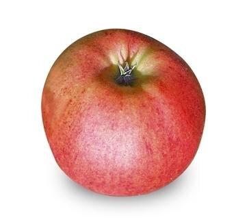 <p>Gala: süß-fruchtig, sehr aromatisch, fest-fleischiges, saftiges Fruchtfleisch, wenig Aroma, mittlere Lagerfähigkeit; Verwendung: frisch, Kuchen, für Babykost, da er wenig Säure hat; Ursprung:&nbsp;Neuseeland</p>