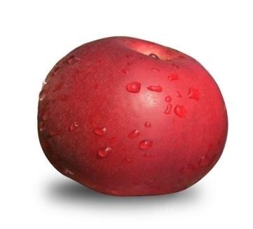 <p>Idared: säuerlich, feste Schale, nicht viel Aroma, wenig Zucker, deshalb als Diätapfel geeignet, lange lagerfähig; Verwendung: frisch, Kuchen, Apfelmus; Ursprung: USA</p>