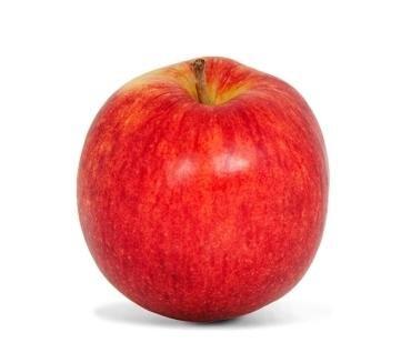 <p>Jonagold: süß-feinsäuerlich, aromatisch, saftiges, gelbes Fruchtfleisch, später weich und mürbe, sehr gut lagerfähig; Verwendung: frisch, zum Backen, Kochen, Braten, für Apfelmus und Saft; Ursprung: USA</p>