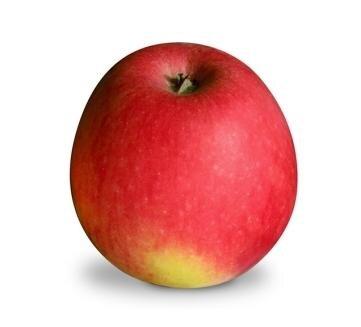<p>Pinova: süß-säuerlich, gut lagerfähig (je länger, um so süßer wird der Apfel); Verwendung: frisch, zum Backen, für Salat; Ursprung: Deutschland, Dresden-Pillnitz</p>