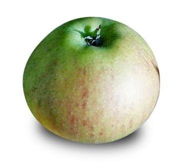 <p>Rubinette: feinsäuerlich, saftig-knackig, intensives Aroma, wird meist von Direktvermarktern angeboten; begrenzt lagerfähig (max. Dezember); Verwendung: frisch, Kuchen, Salat, Müsli, zum Kochen; Herkunft: Schweiz&nbsp;</p>