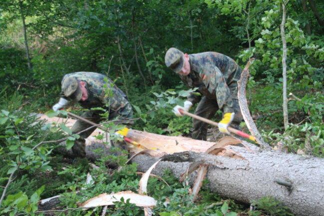 <p>In den nächsten Wochen werden die Soldaten die Forstleute unterstützen.</p>