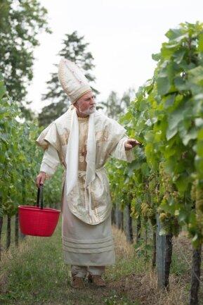 <p>Eine Sortenverschiebung aufgrund des Klimawandels gibt es bisher nicht. Wenn aber Flächen neu bepflanzt werden, überlegen die Winzer genau, für welche Weinsorten sie sich entscheiden. 35 Betriebe kümmern sich in Sachsen hauptberuflich um den Weinbau.</p>