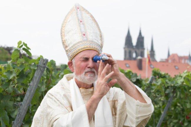 <p>Winzer Dietmar Franke prüft auf dem Ratsweinberg den Zuckergehalt des Mostes mit einem Refraktometer. Dieser gibt bereits Ausschluss über den voraussichtlichen Alkoholgehalt des Weines.</p>