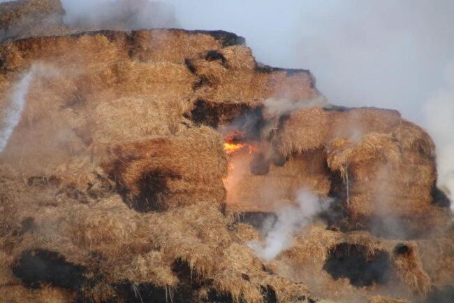 <p>Durch schnelles Eingreifen konnten die Feuerwehrleute zwar binnen einer Stunde verhindern, dass sich das Feuer weiter ausbreitet. Löscharbeiten sind in derartigen Fällen jedoch kompliziert: Erst wenn das Stroh verteilt ist, kann das Feuer komplett gelöscht werden. Sonst entstehen immer neue Glutnester.</p>
