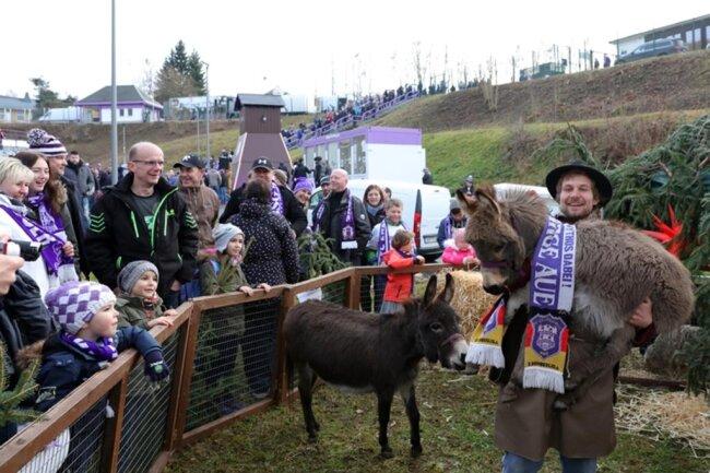 <p>Tierpfleger Peter Hömke vom Förderverein Zoo der Minis Aue e.V. mit Esel Charly.</p>