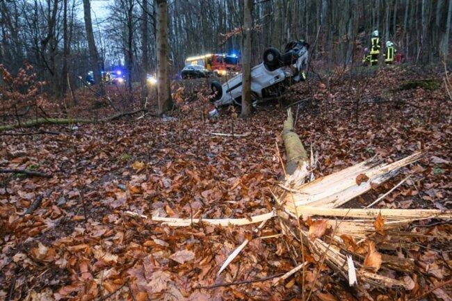 <p>Das Auto fällte zwei kleinere Bäume.</p>