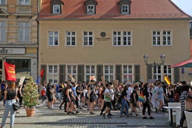 <p>Die Demonstranten zogen durch die Innenstadt.</p>