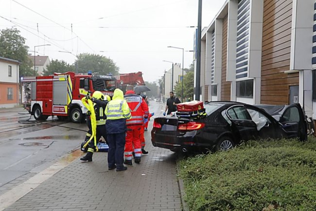 <p>Der Fahrer erlag am Unfallort seinen Verletzungen.</p>