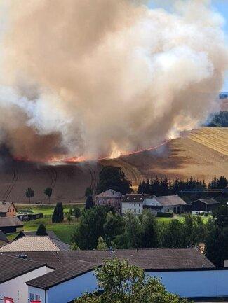 <p>An den Ränder schlugen die Flammen meterhoch. Insgesamt waren 61 Feuerwehrleute mit zwölf Fahrzeugen im Einsatz. Bei den Löscharbeiten fanden die Einsatzkräfte auch ein totes Tier auf dem Feld. Mehrere Rehe waren zuvor offenbar noch rechtzeitig aus dem brennenden Feld geflüchtet.</p>