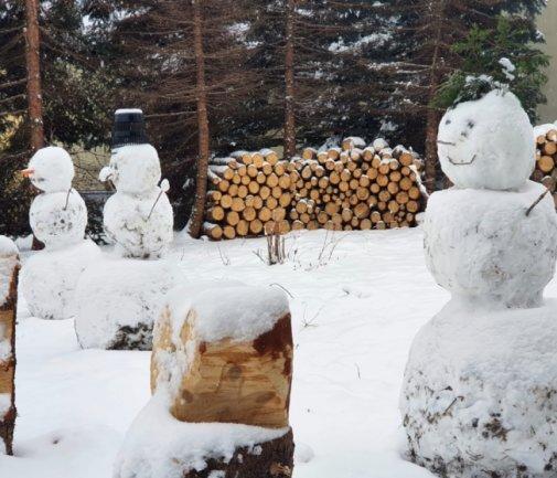 <p>Gleich mehrere Schneemänner mit strahlenden Gesichtern sind auch in Gornau zu sehen. Besonders der Kopfschmuck beeindruckt. Neben einer Glatze und einem Eimer als Hut hat ein Schneemann einen Irokesenschnitt verpasst bekommen.</p>
