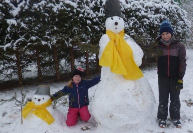 <p>Nico und Lilli Ihle sind Fans des Fußballvereins Borussia Dortmund. Deshalb zieren die Schneemänner der beiden Dresdner, die sie bei ihren Großeltern in Dörnthal gebaut haben, auch gelbe Schals.</p>