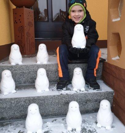 <p>Reichlich ein Dutzend Pinguine hat Dario Klemm aus einer Plasteform gezaubert. Der Großteil der Tiere steht im Hof der Familie in Olbernhau, der Rest bei den Großeltern in Hallbach, erzählt Nicole Klemm, die Mutter des Sechsjährigen. Kleine Äste stellen die Augen dar.</p>