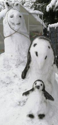 <p>Ihrer Fantasie freien Lauf gelassen haben Kathleen Görner sowie ihre Töchter Jenny und Stella. Auf ihrem Gornauer Grundstück sind mehrere Figuren entstanden, deren Konturen mit schwarzer Farbe gesprüht wurden. Dazu zählen diese Pinguinmutter mit Kind und Pferd.</p>