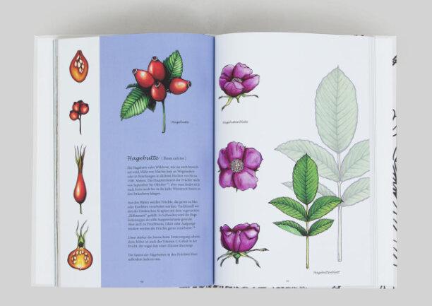"""<p>""""Einfach gedreht,&nbsp;Natürlich gefärbt"""" - Druck, Illustration in Buchform von Aleksandra Chojnacki &amp; Marie Sparrer (23) aus Bayreuth und Weiden</p>"""