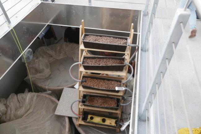 <p>Eine Filteranlage ist schon aufgebaut. Mit&nbsp;ihrer Hilfe wird das Wasser von Fischen und Pflanzen vorgereinigt.</p>