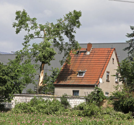 <p>Bei dem Wohnhaus hat ein Dachfenster den Sturm nicht ausgehalten. Am alten Walnussbaum sind fast alle großen Äste abgebrochen.</p>