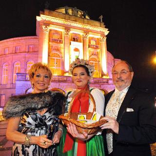 Opernball 2010  Bildnummer 053