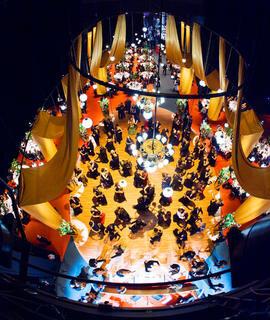 Opernball 2010  Bildnummer 154