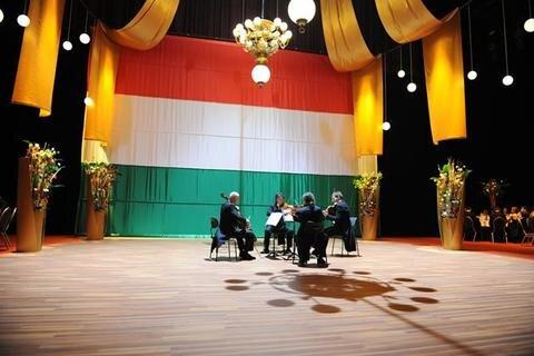 Opernball 2010 Bildnummer 205