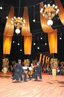 Opernball 2010 Bildnummer 206