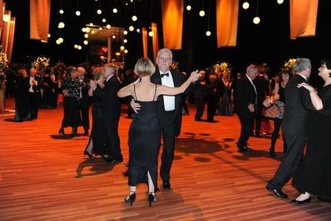 Opernball 2010 Bildnummer 222