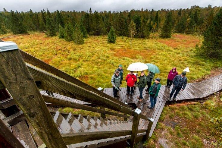 Der rund zwei Kilometer lange Lehrpfad durch das Hochmoor Stengelhaide ist am Wochenende wiedereröffnet worden.