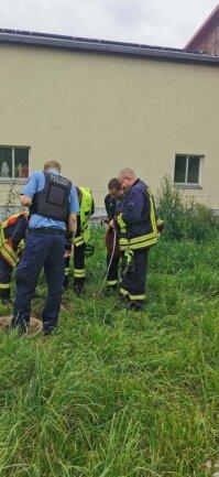 Auch auf umliegenden Grundstücken wurde am Donnerstag geschaut, woher die ölige Flüssigkeit im Erlsbach stammen könnte.