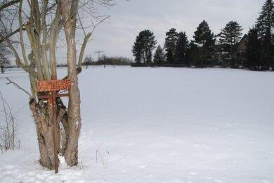 Der letzte Apfelbaum am sogenannten Apfelweg. Dort soll eine Eigenheimsiedlung entstehen.