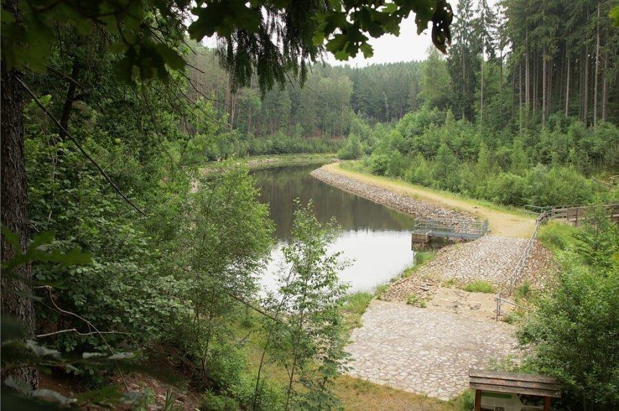 Neun Jahre nach der Sanierung hat sich die Natur rund um den Teich erholt, und das Areal lädt zum Wandern ein.