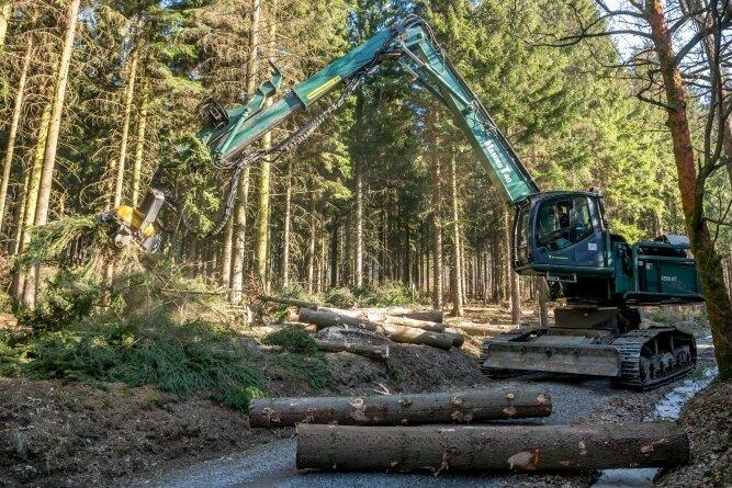 Von geeigneten Waldwegen aus kann der Raupenharvester bis zu 15 Meter entfernte Bäume fällen.