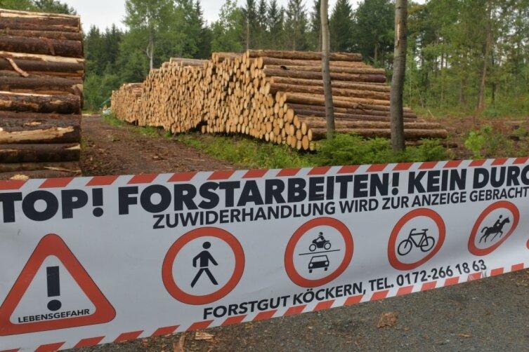 Der Holzeinschlag durch die beauftragten Dienstleister im Wald geht weiter: Derzeit laufen Arbeiten im Stadtwald an der B 173 nahe dem Ortsausgang Freiberg. Deshalb darf das Gebiet nicht betreten werden.