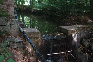 Hier wurde bisher das Sahnbach-Wasser angestaut.