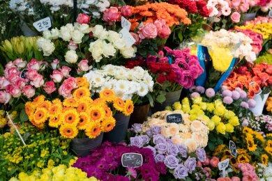 So ein Blütenmeer werden Kunden wohl lange nicht mehr in den Läden sehen. Floristen dürfen bestellte Ware nur noch liefern und müssen sie an der Haustüre abgeben.