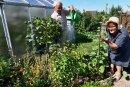 Im Kleingartenverein Panorama in Freiberg muss Gerhard Stehr mit Leitungswasser gießen. Die Regenfässer sind noch immer fast leer. Gartendoktor Katrin Keiner prüft den Wasserstand im Regenmesser.