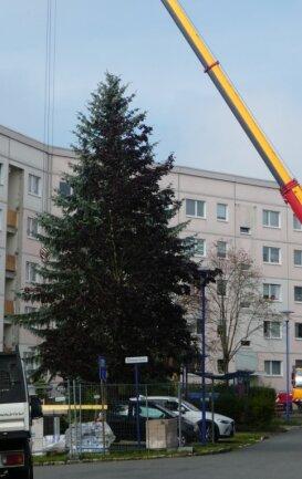 Auch diese an der Ecke Leinweberstraße/Julius-Mosen-Straße stehende Fichte wurde gefällt. Der Kran war dafür allerdings nicht nötig, er wurde für Arbeiten an den Wohnblöcken gebraucht.
