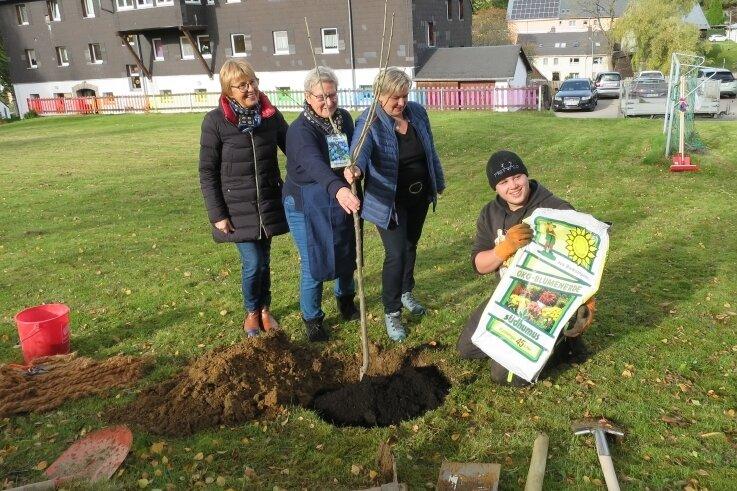Hannelore Prager, Petra Zönnchen und Swantje Bock (v. l.) gehen Ricardo beim Pflanzen eines Baumes helfend zur Hand.