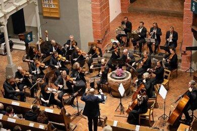 Seit Oktober vergangenen Jahres hat sich das Ensemble Amadeus nicht mehr treffen können.