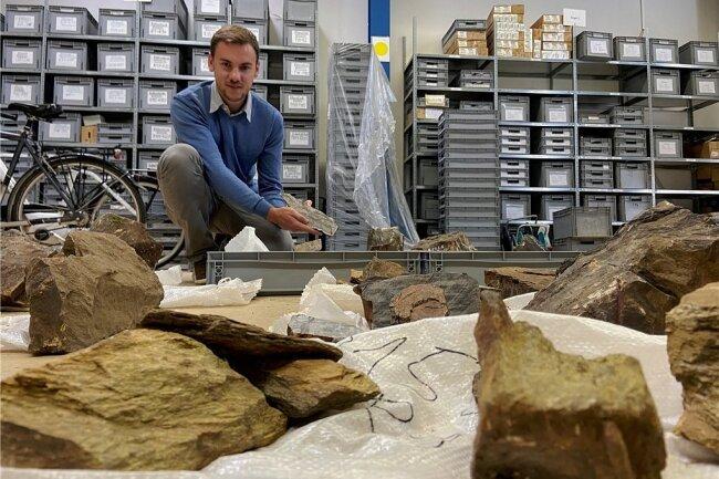 Beak-Geologe Martin Köhler zeigt das Lager mit Gesteinsproben einer wieder entdeckten Zinn-Lagerstätte südlich von Aue. Die Freiberger Firma erkundet nun die Lagerstätte mithilfe der EU genauer.