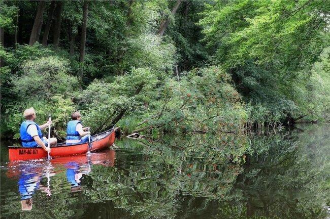 Christin und Robert auf dem Weg zum Granziner See. Gleich muss die Hexe aus dem Dickicht springen.