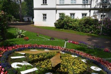 Die Blumenuhr im Stadtpark Hainichen war oft Ziel von Randalierern. Jetzt wird sie durch eine Videokamera vom gegenüberliegenden Gellert-Museum aus überwacht.